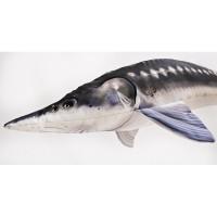 Plüschfisch Stör 120cm