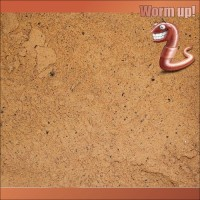 IB Carptrack Worm Up Mix